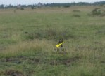 50 by 100 Plots for Sale in Juja Farm – 550K (Ready Titles)